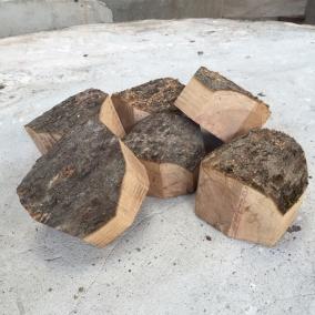 boom uit eigen tuin